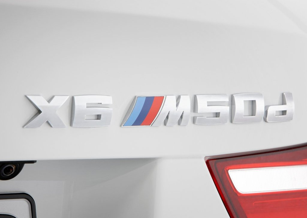 2013 BMW X6 M50d Emblem (Photo 3 of 17)