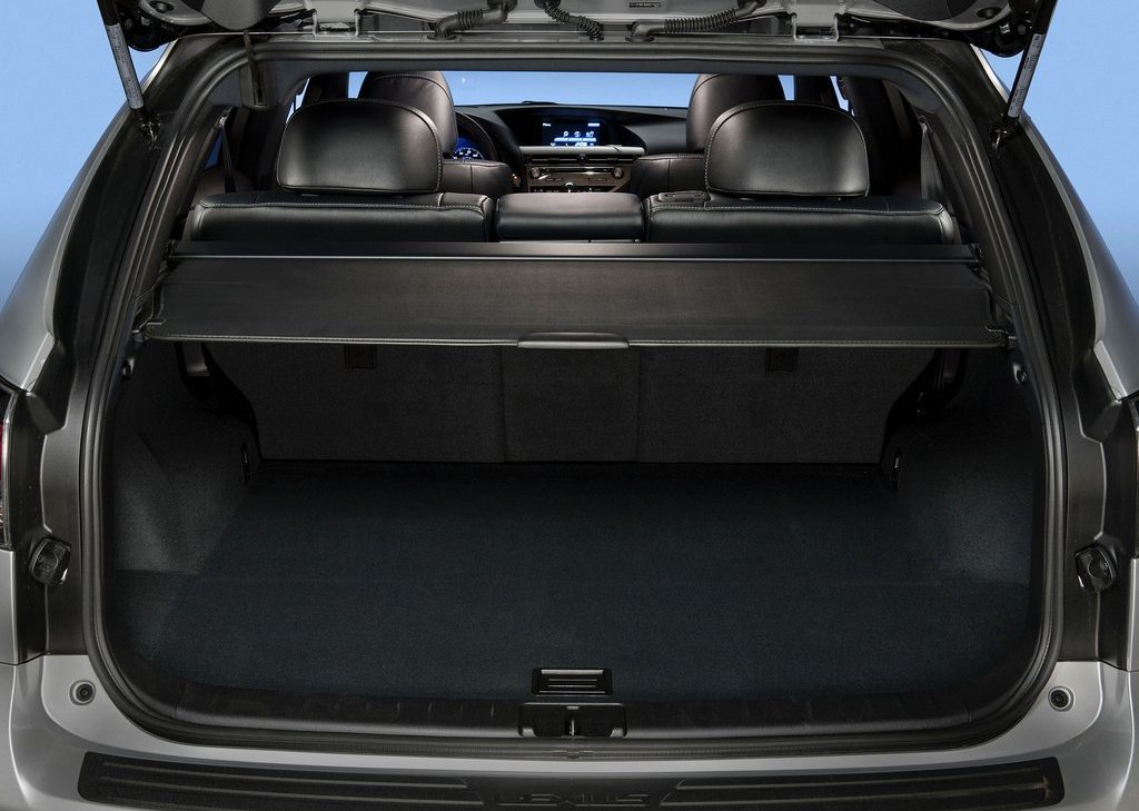 2013 Lexus RX 350 F Sport Trunk (Photo 16 of 19)