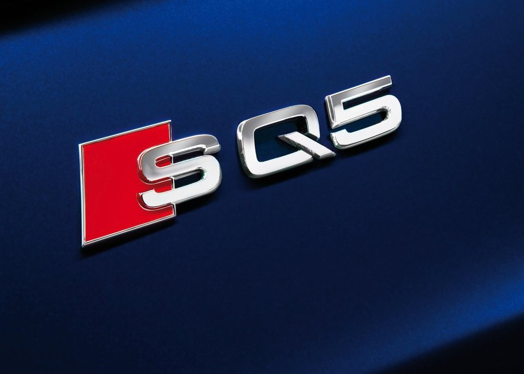 2013 Audi SQ5 TDI Emblem (Photo 4 of 13)