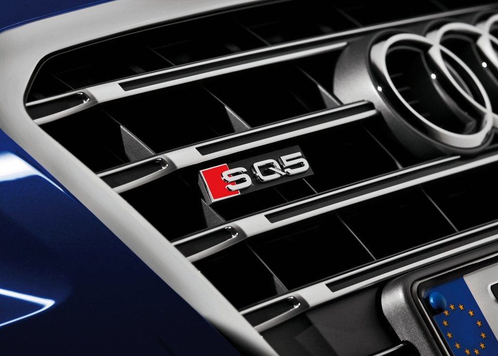 2013 Audi SQ5 TDI Grill (Photo 6 of 13)