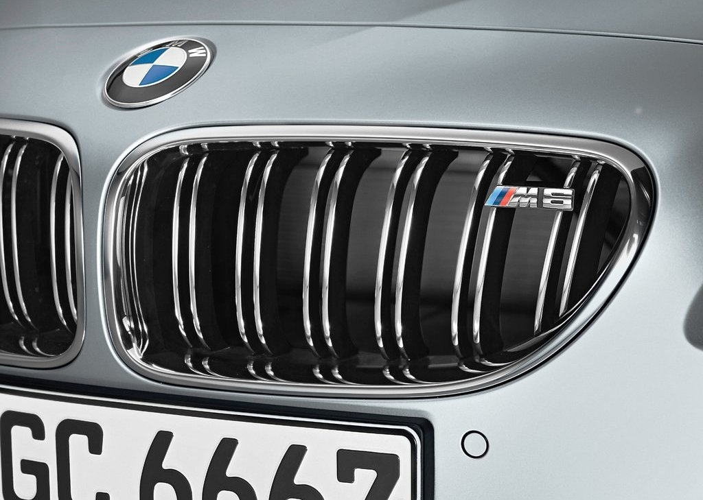 2014 BMW M6 Gran Coupe Grille (Photo 4 of 9)