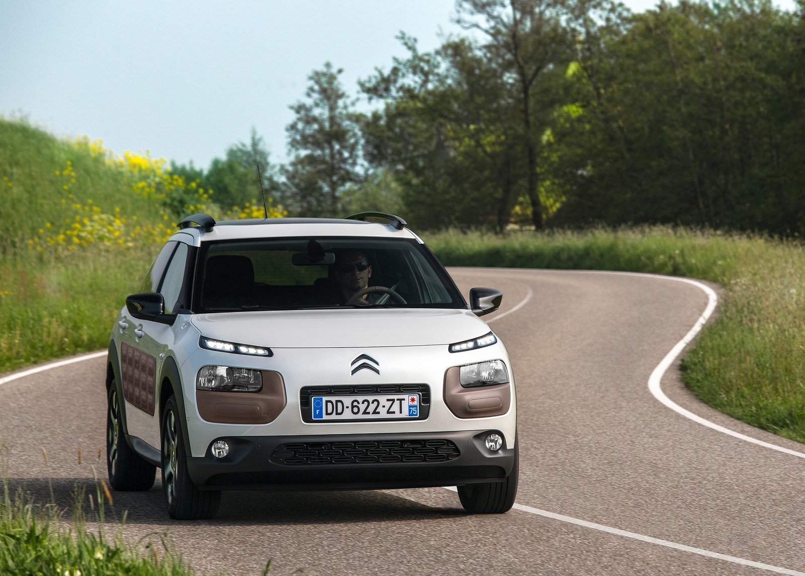2015 Citroen C4 Cactus White Front Angle (Photo 19 of 21)
