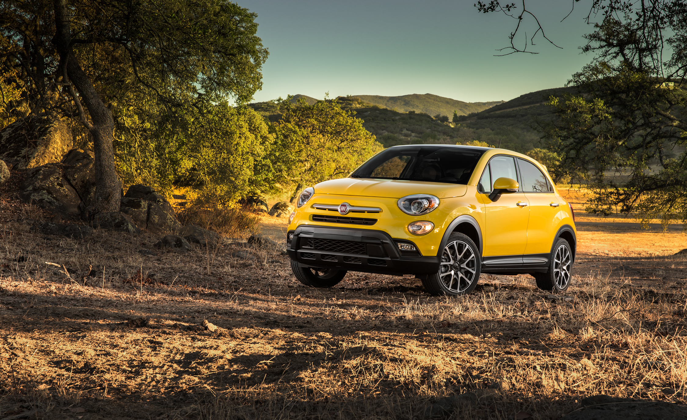 2016 Fiat 500X Trekking Plus (Photo 41 of 66)