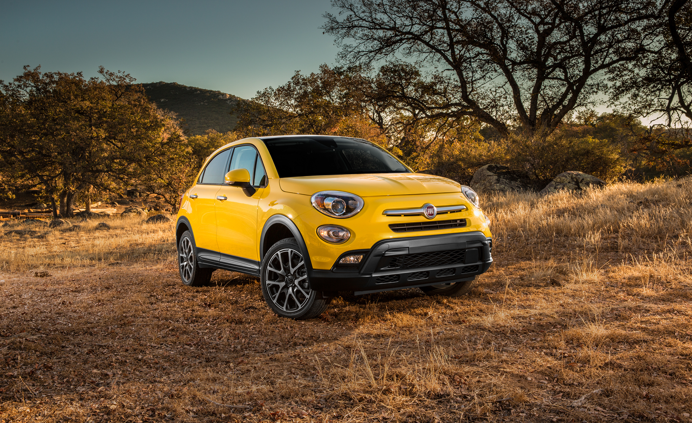 2016 Fiat 500X Trekking Plus (Photo 46 of 66)