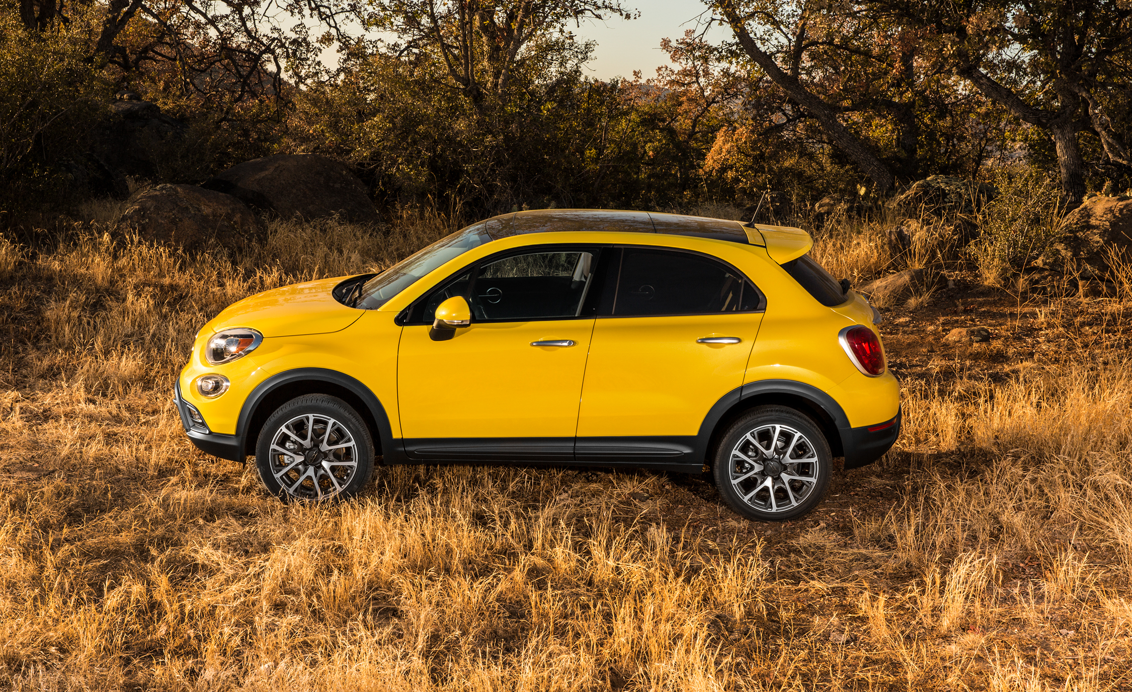 2016 Fiat 500X Trekking Plus (Photo 33 of 66)