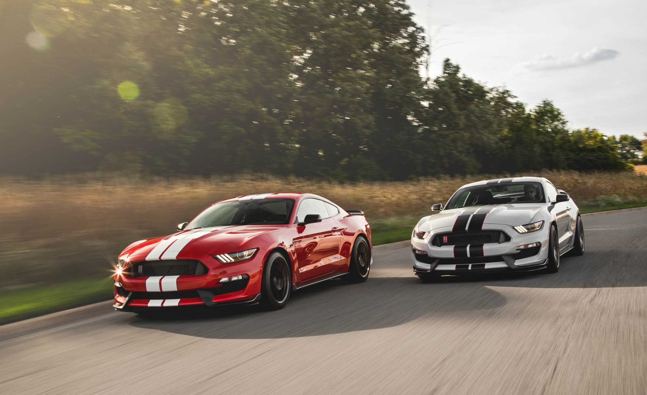 Featured Image of 2016 Ford Mustang Shelby GT350 / GT350R