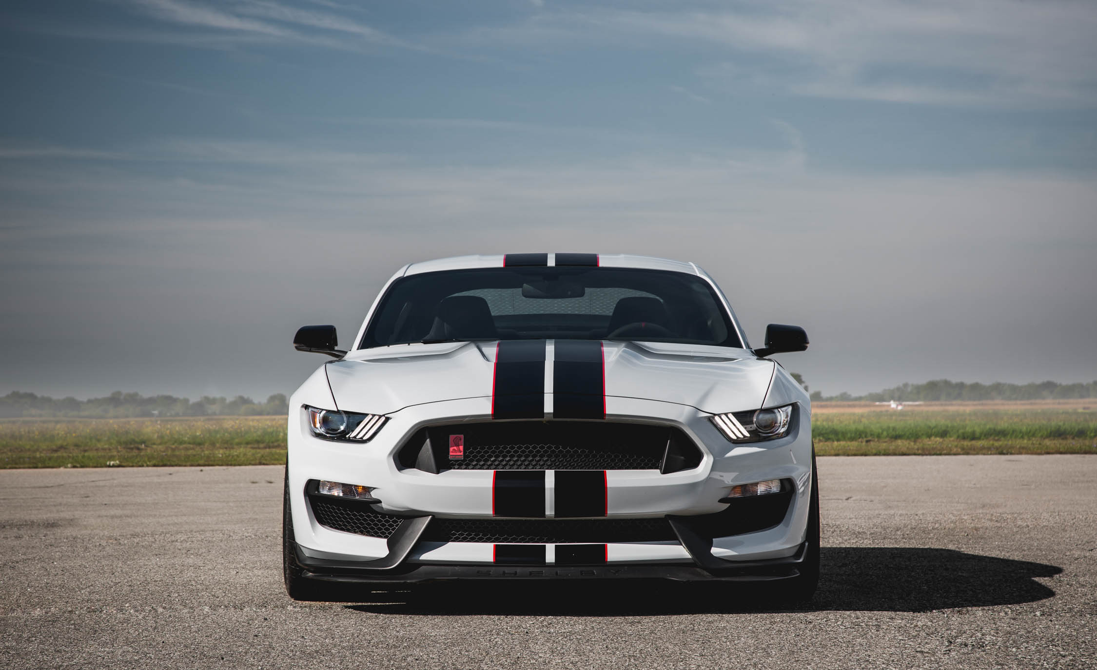 2016 Ford Mustang Shelby GT350R (Photo 26 of 47)