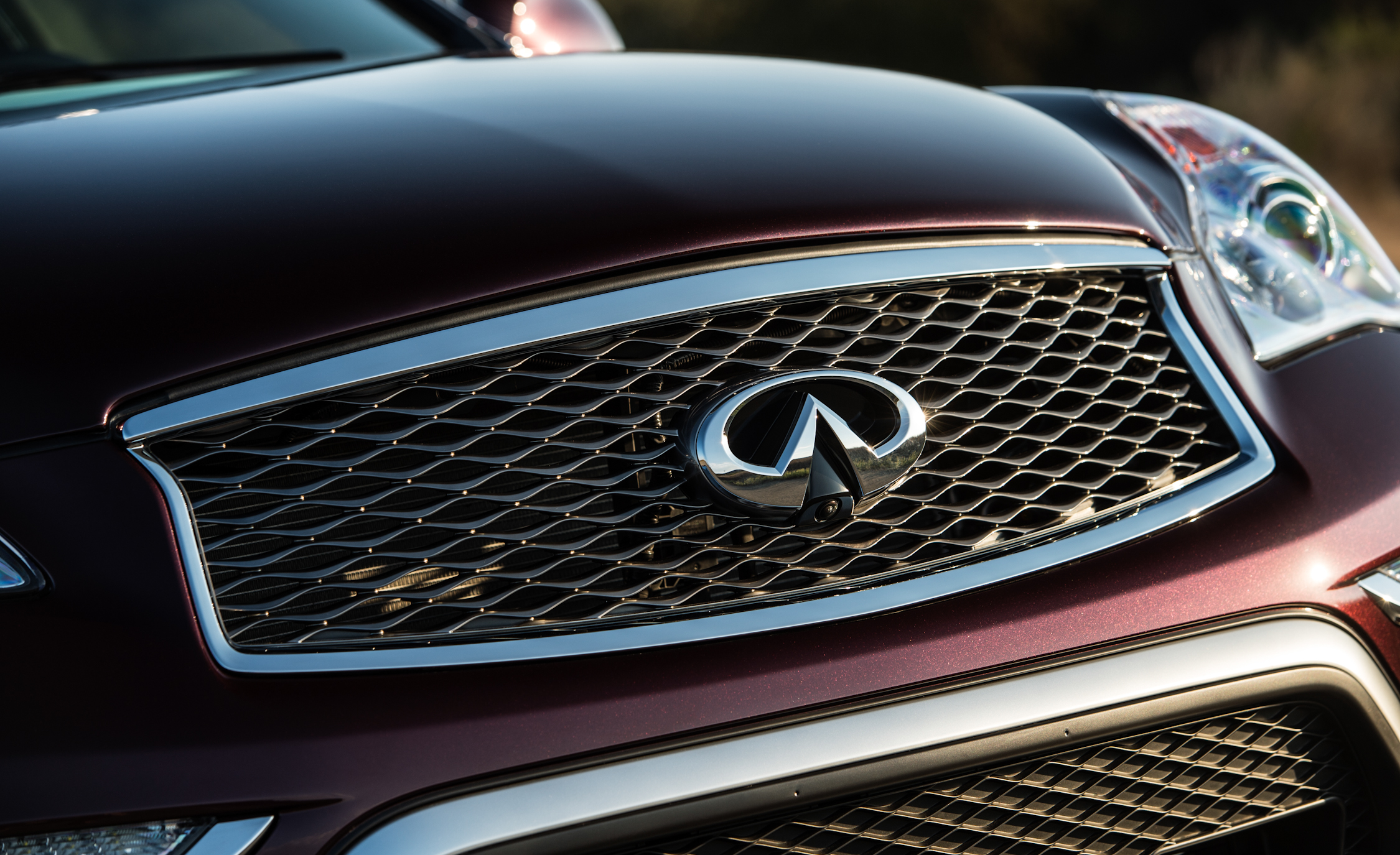 2016 Infiniti QX (Photo 19 of 30)