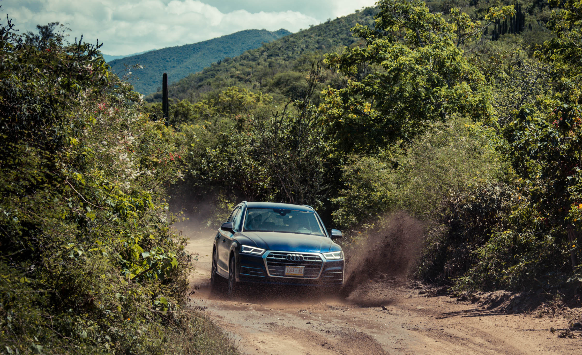 2018 Audi Q (View 24 of 40)