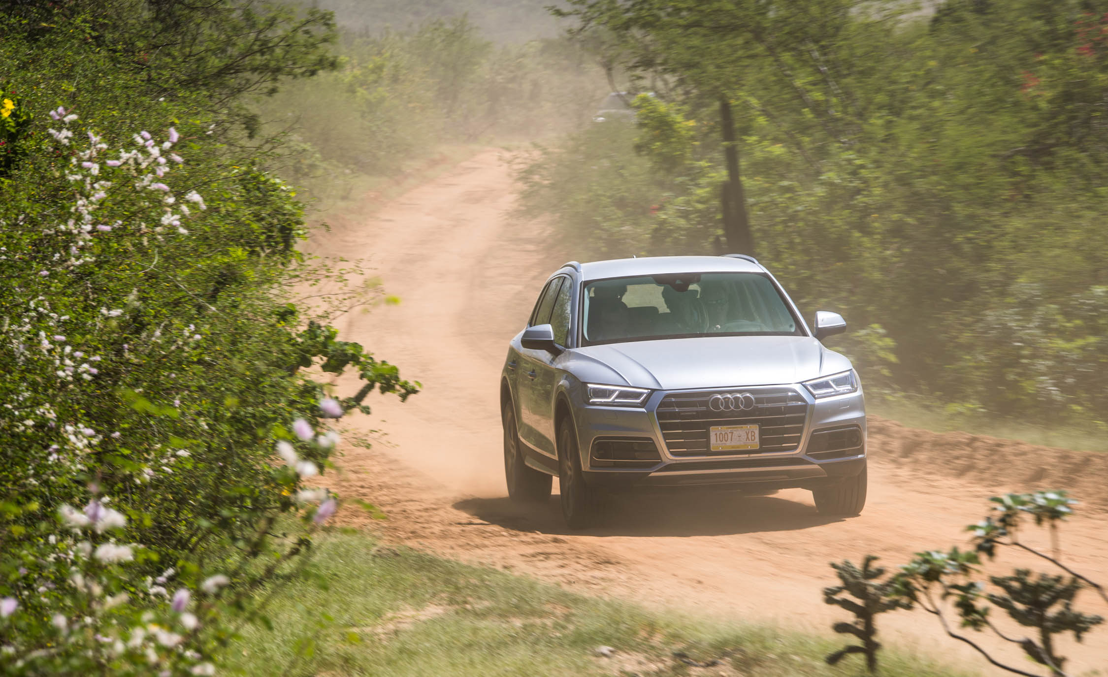 2018 Audi Q (View 11 of 40)