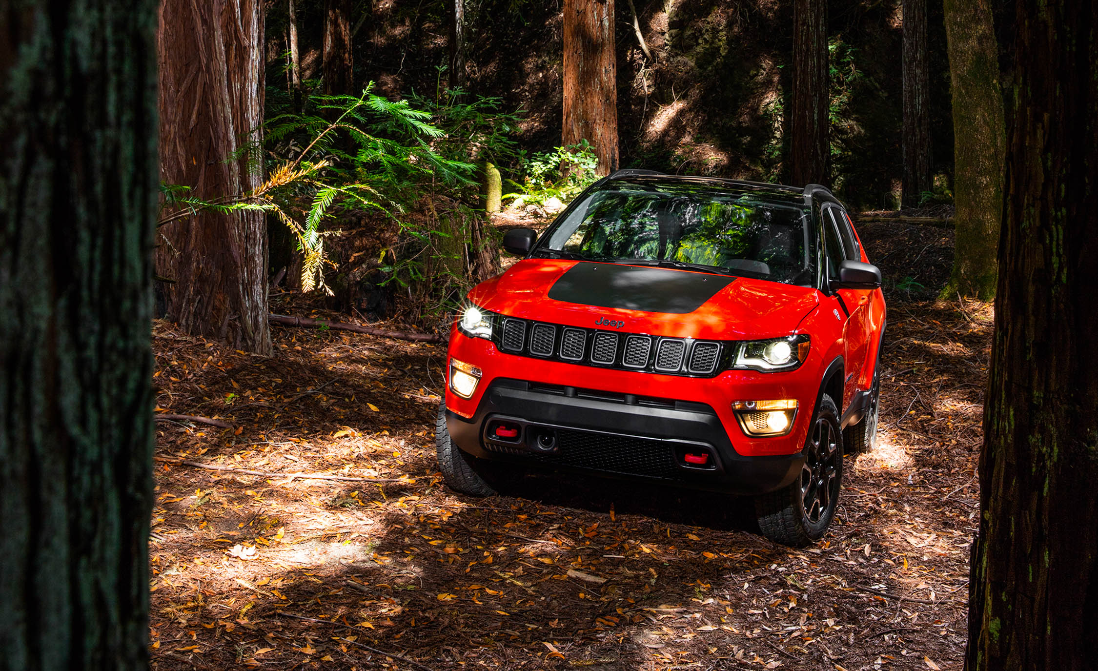 2017 Jeep Compass Trailhawk 4× (Photo 45 of 49)