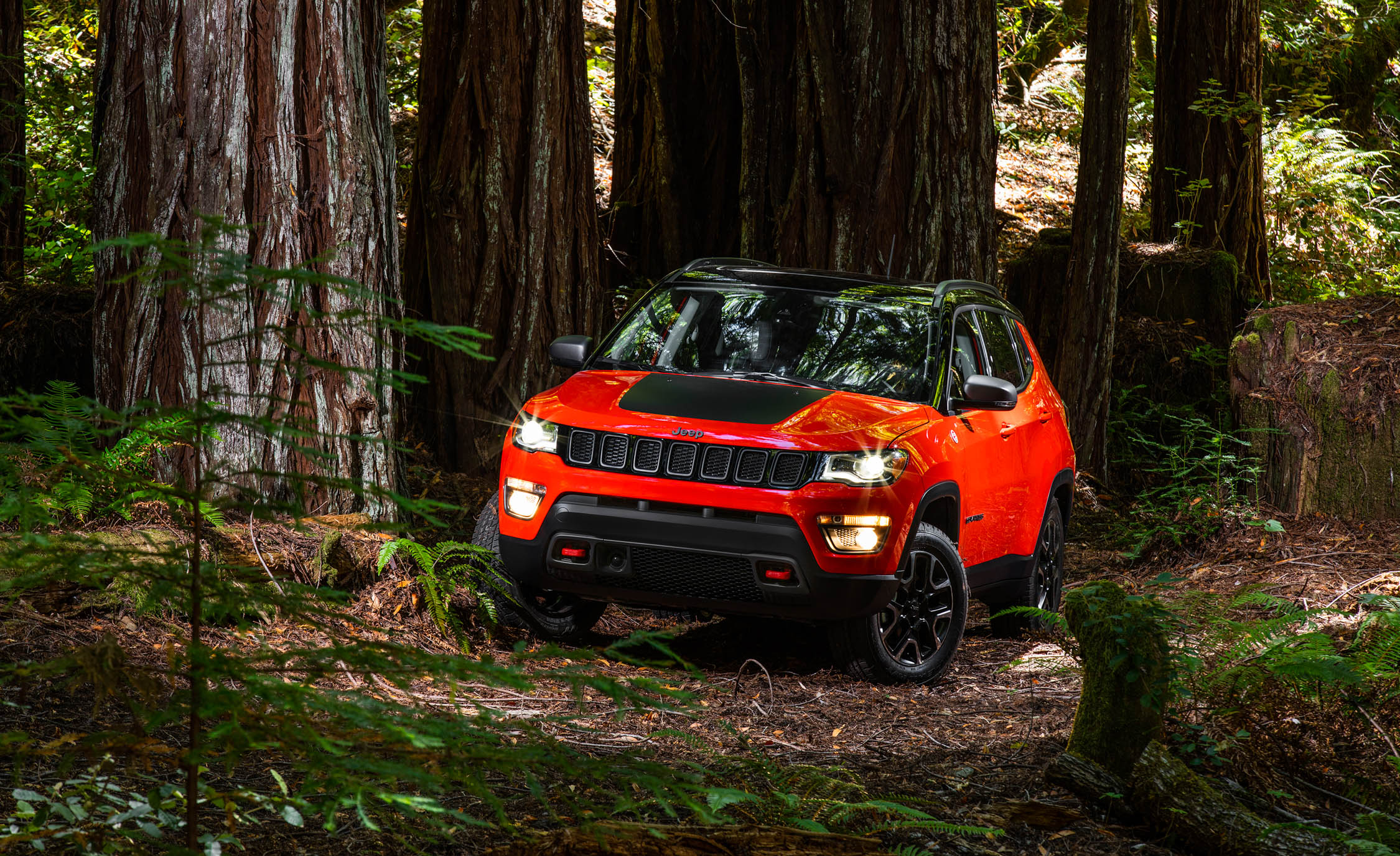 2017 Jeep Compass Trailhawk 4× (Photo 44 of 49)